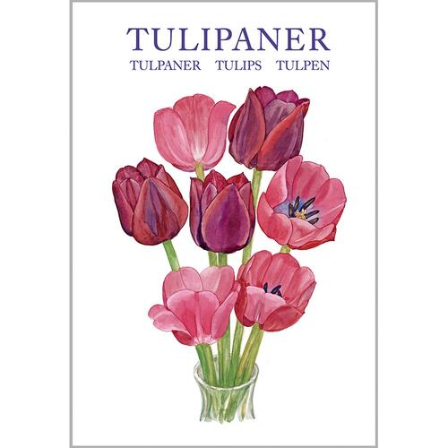 TULIPS - 8 cards