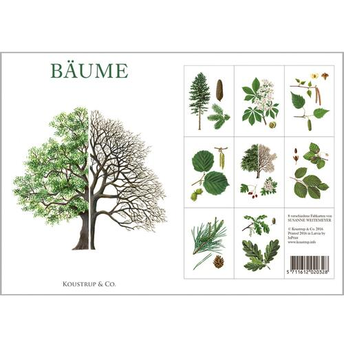 BÄUME - 8 cards (German)
