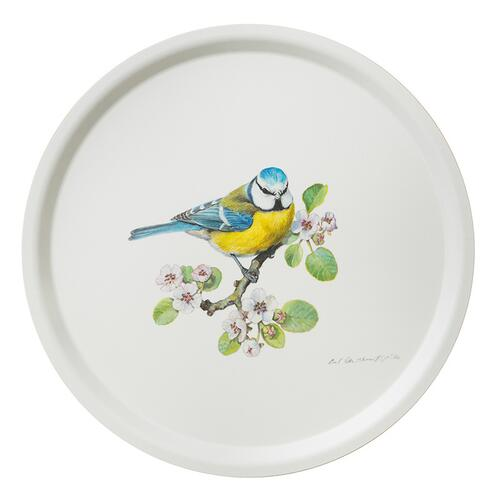 TRAY Ø38 - Blue tit - OUT OF STOCK