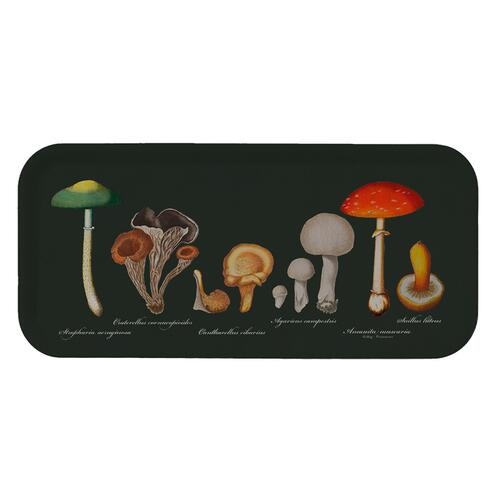 TRAY 32x15 - Mushrooms