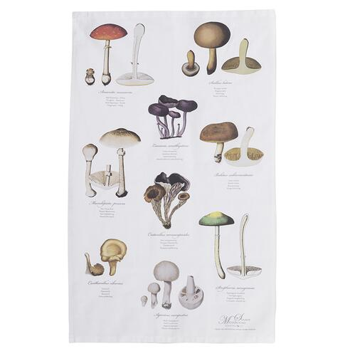 ORGANIC TEA TOWEL - Mushrooms