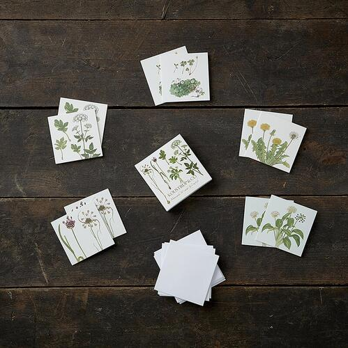 SQUARE MINI CARDS - Edible wild plants - 8.5 x 8.5 cm