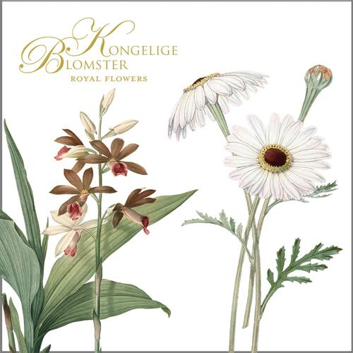ROYAL FLOWERS - Square card folder