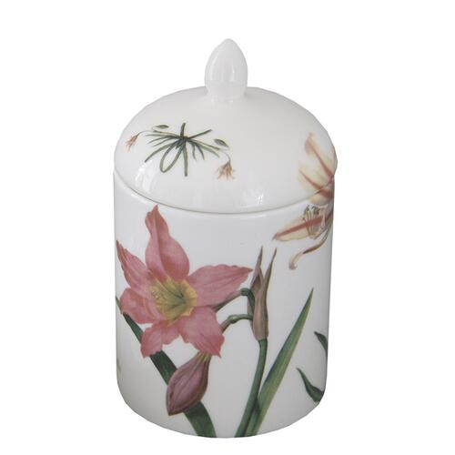 Porcelain lidded box - Amaryllis