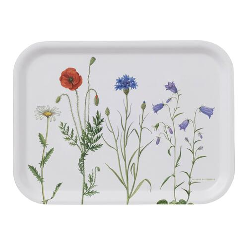 TRAY 20x27 - Hedgerow