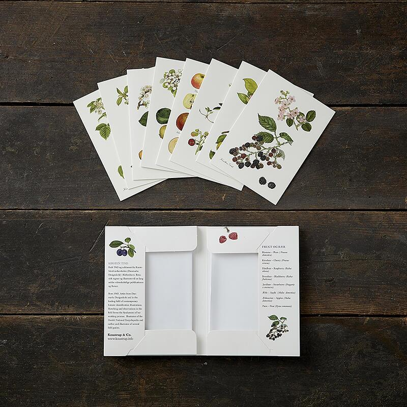 FRUIT AND BERRIES - 8 cards (danish)