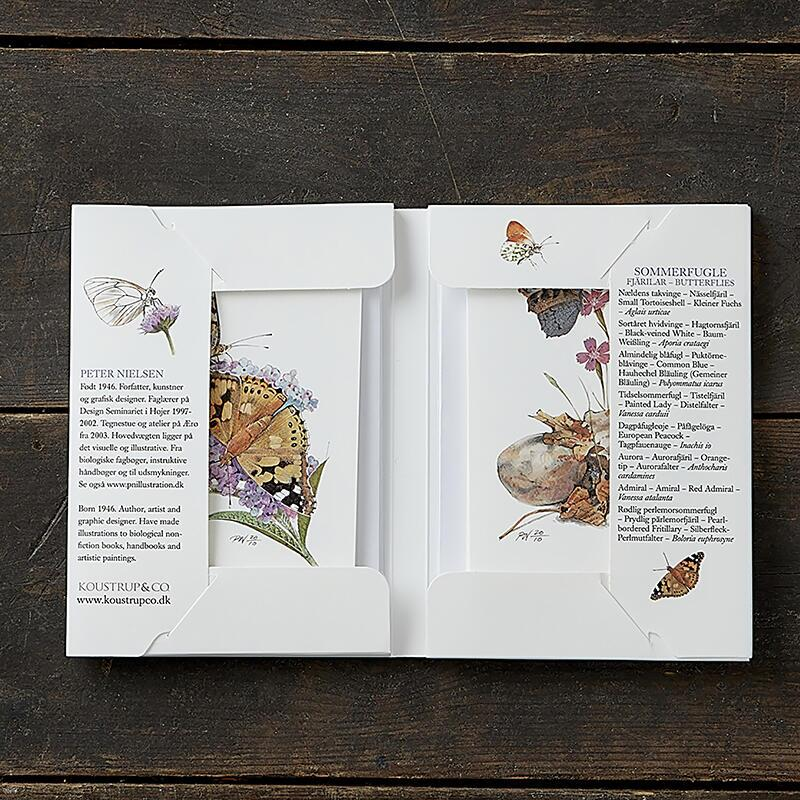 BUTTERFLIES - 8 cards