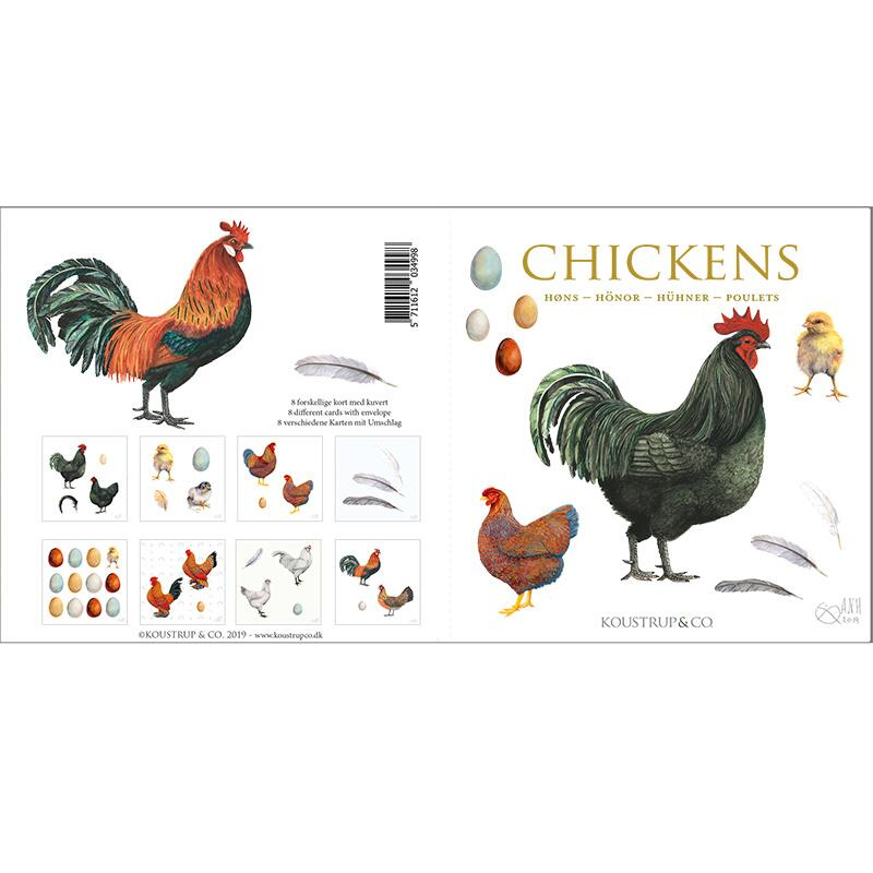 CHICKENS - Square card folder