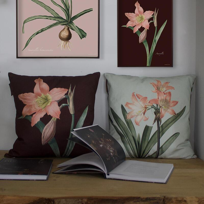 CUSHION COVER - Amaryllis Belladonna