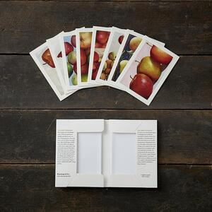 APPLES - 8 cards - SALE