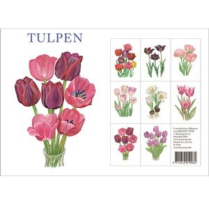 TULPEN - 8 cards (german)