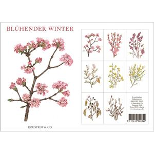 BLÜHENDER WINTER - 8 cards (German)