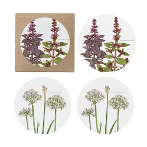 COASTERS - Herbs - 4 pack