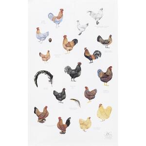 ORGANIC TEA TOWEL - Chickens - OUT OF STOCK