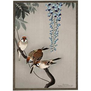 ART PRINT - Tree sparrow