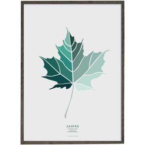 Leaves - Norway Maple (petrol) - ART PRINT - CHOOSE SIZE