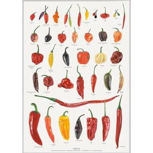 EXCLUSIVE ART PRINT - Chili - A3 format - printed on mat paper